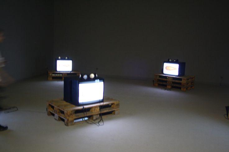 Biennale Venezia 2013, HUNGARY