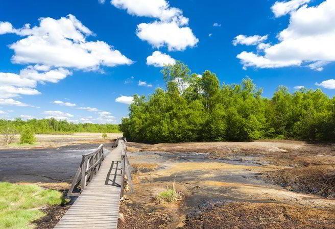 Kudy z nudy - Národní přírodní rezervace Soos - evropská rarita nedaleko Františkových Lázní
