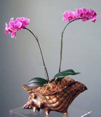 I love this orchid idea!