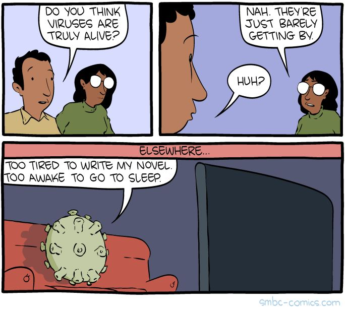 http://www.smbc-comics.com/comic/virus