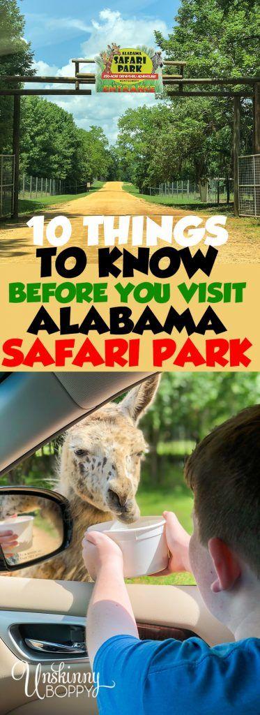 Ein Muss in Montgomery: Alabama Safari Park Wer wusste, dass wir afrikanische und exotisc … – safari.