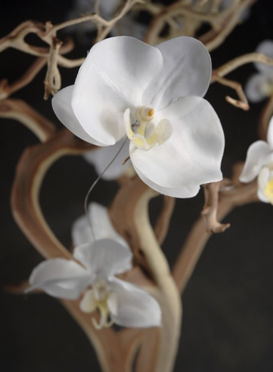 5' Cream White Orchid Garland with 10 Orchids $5.99 each /12 for $5 each