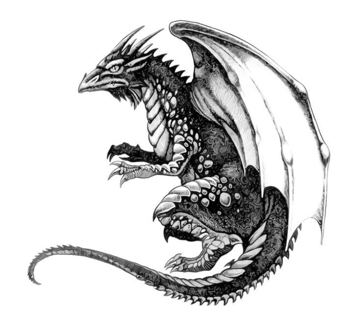 Scottish Dragon Tattoos: 17 Best Ideas About Celtic Dragon Tattoos On Pinterest