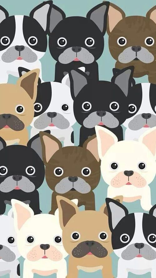 Imagen de dog, wallpaper, and background