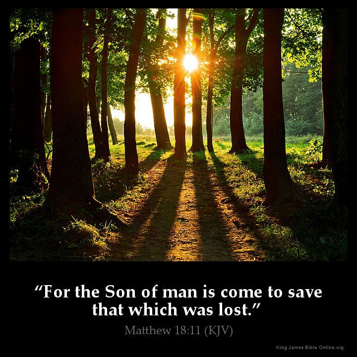 Matthew 18:11 For the Son of man is come to save that which was lost. Matthew 18:11 (KJV) from King James Version Bible (KJV Bible) http://ift.tt/1OumV1K Filed under: Bible Verse Pic Tagged: Bible Bible Verse Bible Verse Image Bible Verse Pic Bible Verse Picture Daily Bible Verse Image King James Bible King James Version KJV KJV Bible KJV Bible Verse Matthew 18:11 Pic Picture Verse #KingJamesVersion #KingJamesBible #KJVBible #KJV #Bible #BibleVerse #BibleVerseImage #BibleVersePic #Verse…