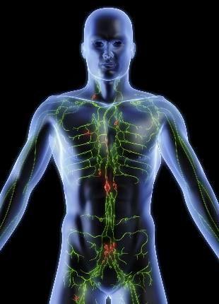 O linfoma não-Hodgkin é um tipo de câncer que se origina nos gânglios. Veja os sintomas, diagnóstico e tratamentos do linfoma não-Hodgkin.