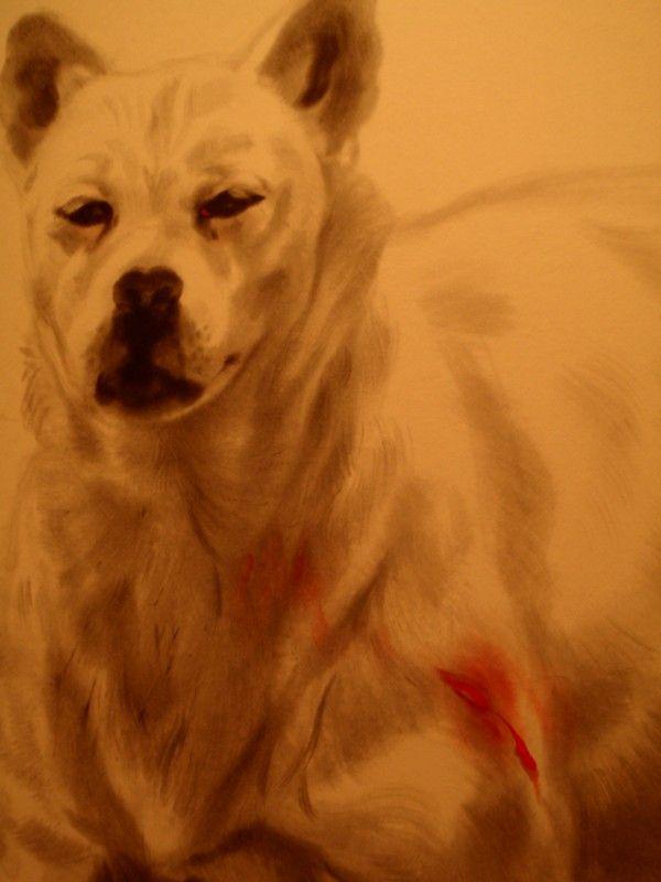 pes Straka