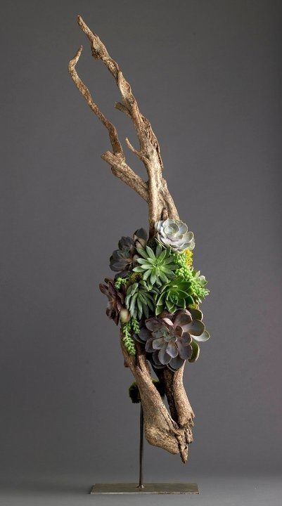 Driftwood Succulents...instead of on stands, lay in the middle of the table for an elongated tablescape.