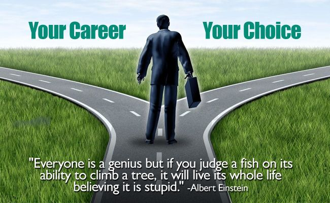Your Career, Your Choice!