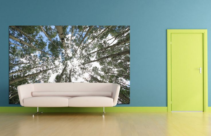 Large nature home decor fine art photograph fabric wall cling art peel and stick wall decal aspens tree blue and green wall art home decor by caughtitoncanvas on Etsy https://www.etsy.com/listing/214381969/large-nature-home-decor-fine-art