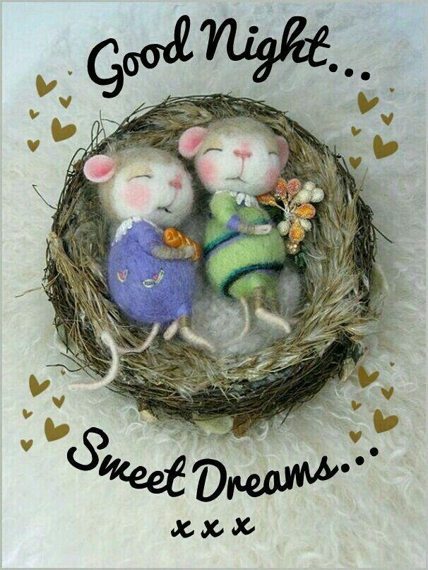 einen schönen Abend und eine gute Nacht und schöne Träume - http://guten-abend-bilder.de/einen-schoenen-abend-und-eine-gute-nacht-und-schoene-traeume-63/