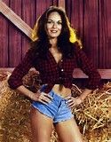 Catherine Bach when she was playing Daisy Duke on TV's The Dukes of Hazzard