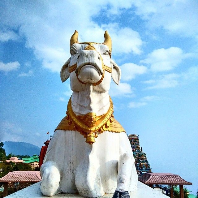 Namchi (Nepali : नाम्ची) is the capital of the South Sikkim district in the Indian state of #Sikkim.  The appellation Namchi means Sky (Nam) High (Chi) in Bhutia.  #indianfestival  #Mahashivratri  PC:@gilaaf