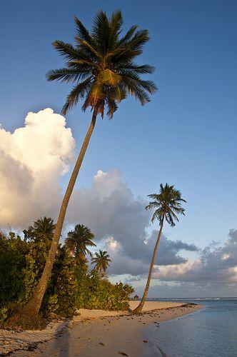 Bois Jolan Beach   Guadeloupe   French Antilles (by maxime cazalas)