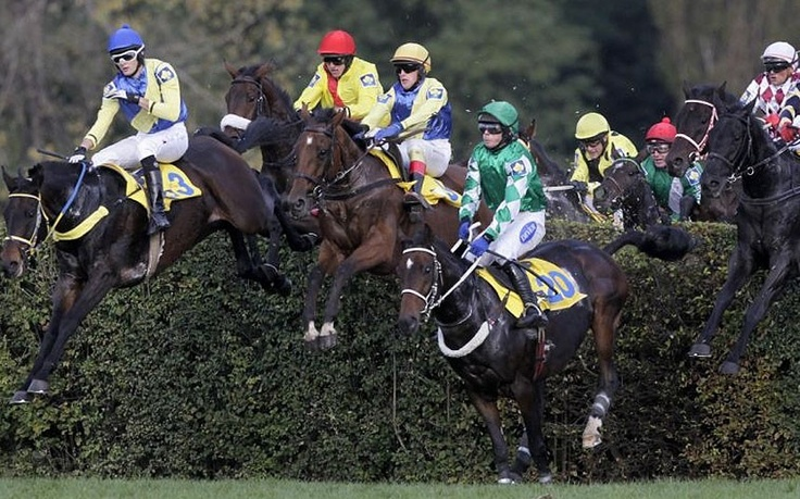 Fence named Taxis, in the Czech Republic Grand National, the Velka Pardubicka.