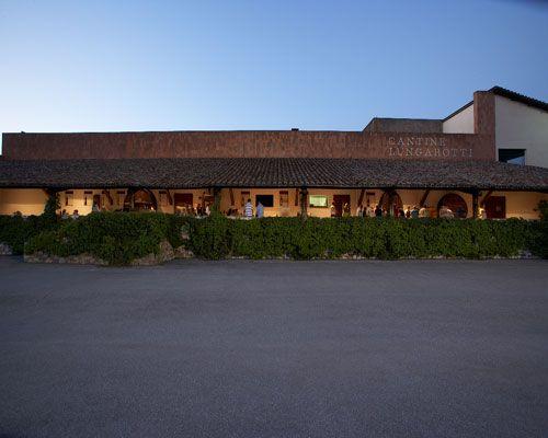 Rubesco wine at Cantine Lungarotti - Torgiano Umbria
