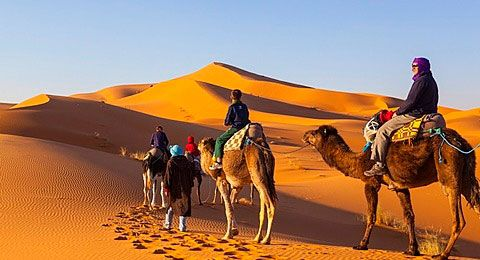#LuxuryTripMorocco you will get to experience mysterious desert, towering mountains and stunning coastlines of this exotic land. Discover the vibrant atmosphere and dramatic landscapes of #Morocco with http://www.camelsafaries.net/