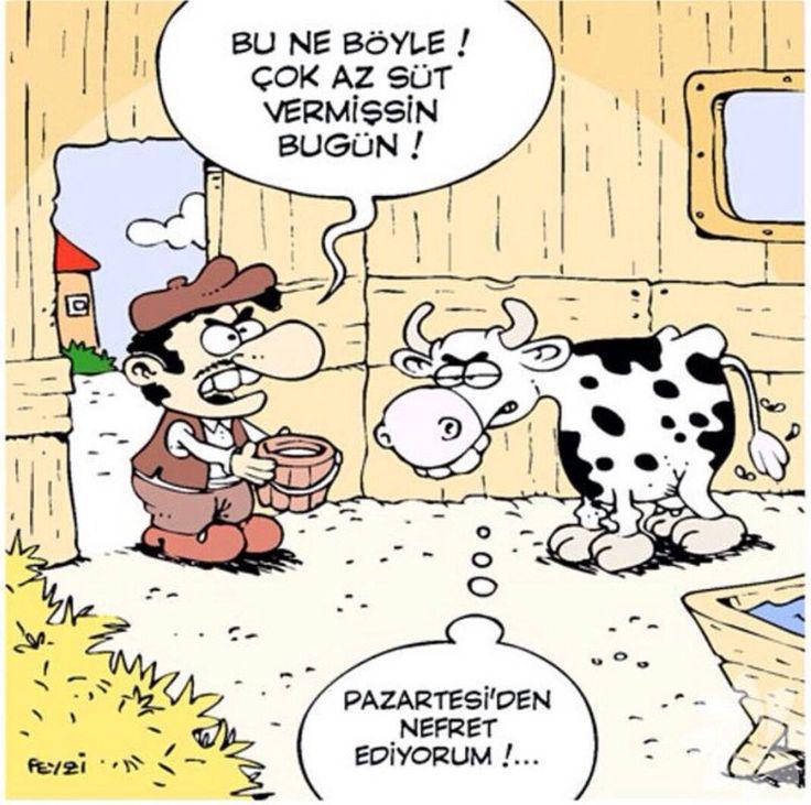 Karikatür komedi dram pazartesi