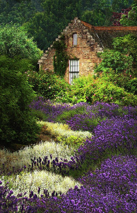 A cottage in the Highlands of Scotland- so dreamy.... I could live here!!! @tmnkeel @chickadeegirl71
