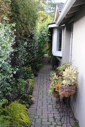 Transforming a side yard from blah to beautiful curved for Garden designs for side of house