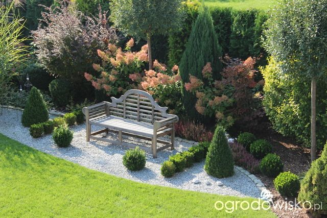 Moja pierwsza hortensja w ogródku. - strona 535 - Forum ogrodnicze - Ogrodowisko