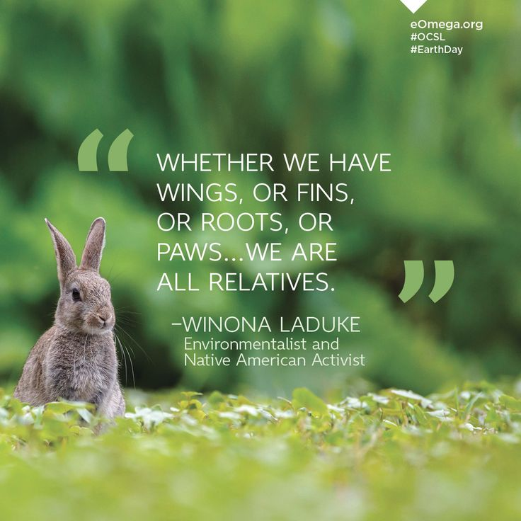 """Whether we have wings, or fins, or roots, or paws...we are all relatives."" —Winona LaDuke, Environmentalist and Native American Activist #EarthDay #OCSL"