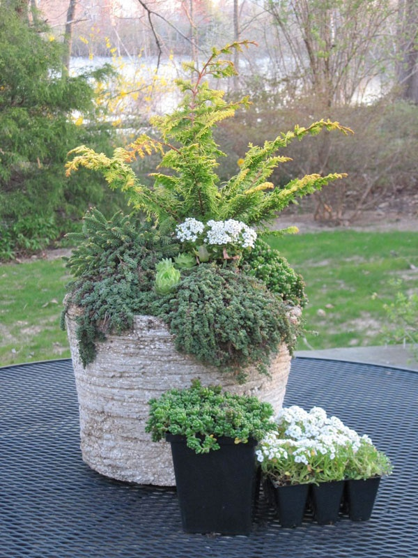 Diy Patio Garden Planters