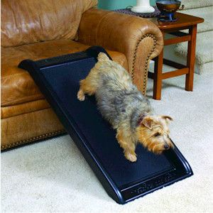 This Deluxe Telescoping Pet Ramp can protect your giant or teeny pooches from damaged hips, strained back, and ligament tears caused by a lifetime of jumping. Pet ramps for bed access allows your favo