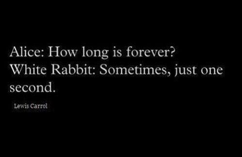 One second white rabbit