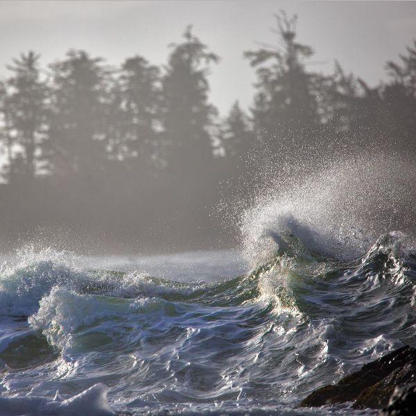 Storm Waves....Tofino. Photo by hennessy8 via IG