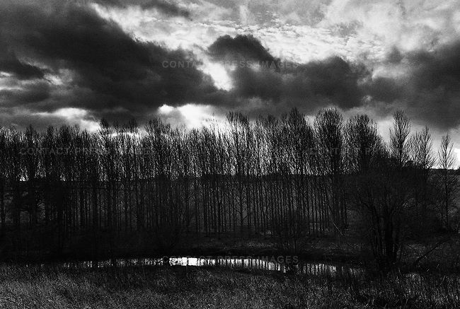 Don McCullin. River Frome, Somerset, UK, 1986