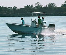 12 best best fishing spots on the east coast images on for East bay fishing report