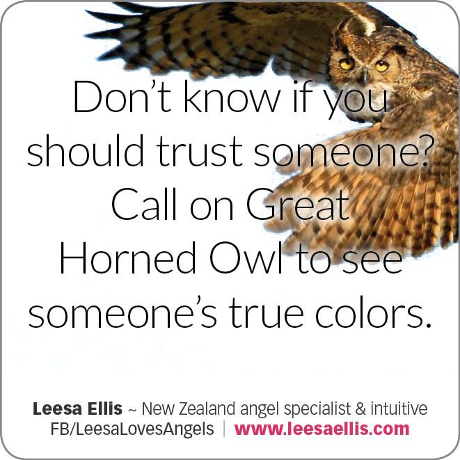 Don't know if you should trust someone? Call on the #GreatHornedOwl to see someone's true colors. #animaltotem #spiritual