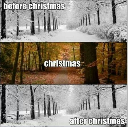 Christmas...so true christmas eve it snowed christmas it was gone