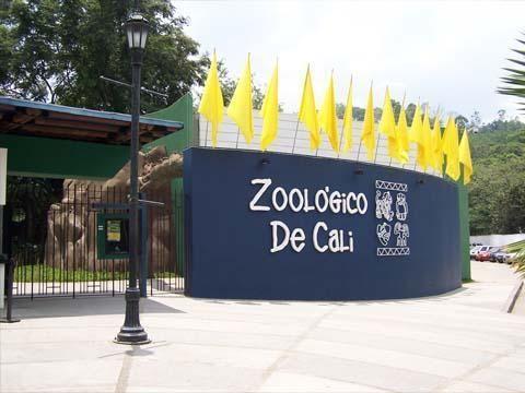 Uno de los destinos obligados al visitar la hermosa ciudad de Cali es conocer su espectacular zoológico, ubicado en Cra 2 oeste con cll 14 uno de los sitios de atracción turística más visitados y también uno de los mejores del país tanto en instalaciones como en animales en exhibición. El parque cuenta con servicios que le permitirán a usted tener una de las mejores experiencias y aprender más sobre los animales que en él habitan. #DeCaliSeHablaBien