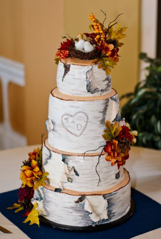 can i prune a wedding cake tree 26 best images about birch tree cake on 12359