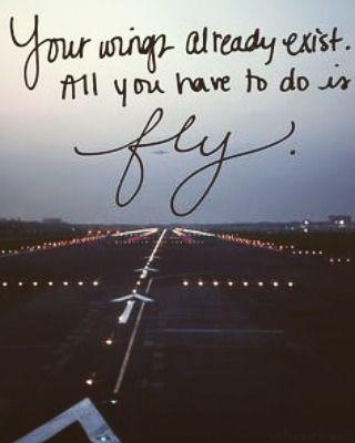 dream high fly high