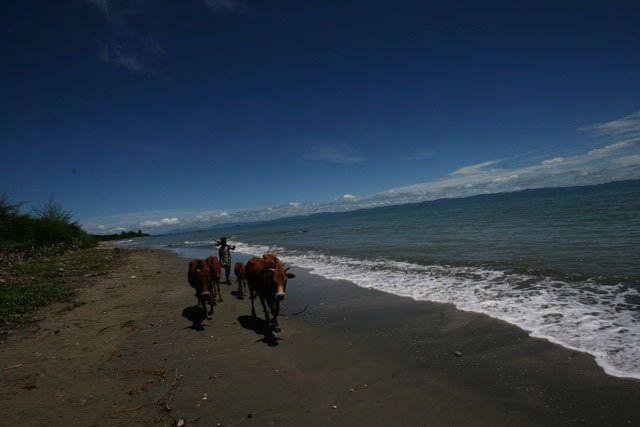 world weather forecast day 2015 .. bay of bengal at st martin island -- august 2010 ..  Copyright :Abdul Malek Babul FBPS .