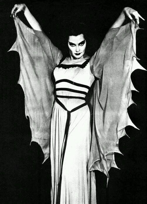 Lily Munster                                                       …