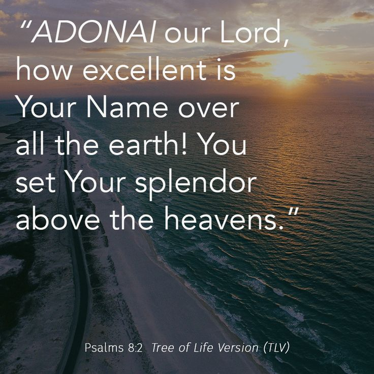 """ADONAI our Lord, how excellent is Your Name..."" Psalms 8:2 TLV #tlvbible #verseoftheday"