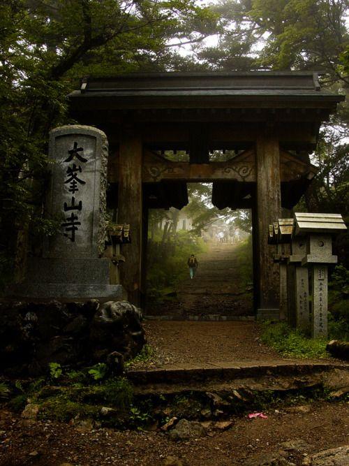 This photo was taken on July 30, 2006 in Tenkawa-mura, Nara Prefecture, JP