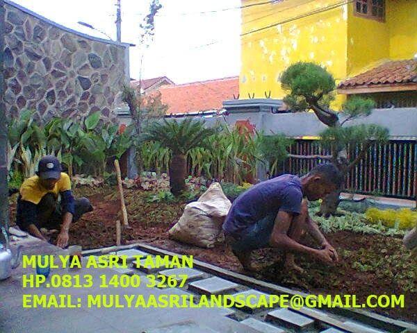 Jasa Tukang Taman Cipete | Tukang Taman Jakarta Selatan Mulya Asri Taman Hp. 0813 1400 3267