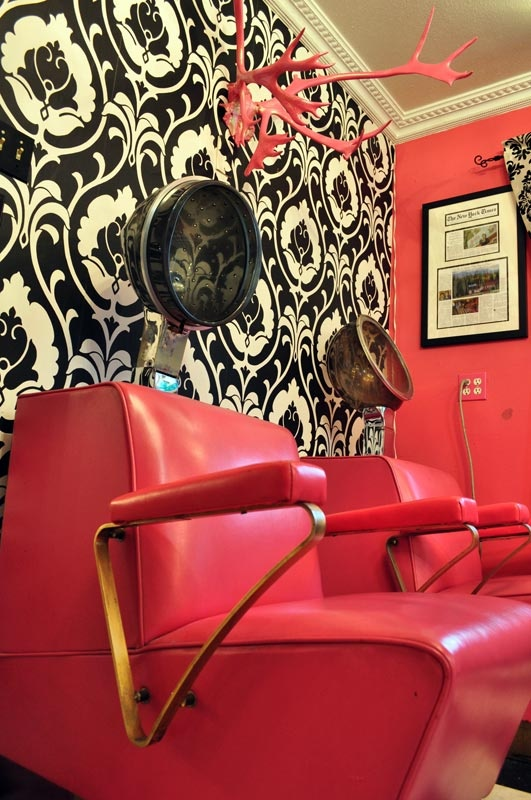 Retro Pink Beauty Shot Salon Hood Dryers Black And White Damask Pink Walls  Girly Salon Getting Hair Done Style Beehive Beauty Shop