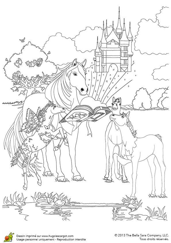 Tu d couvriras le monde imaginaire des chevaux magiques - Coloriage equitation ...