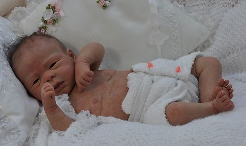 Reborn baby Doll Michelle Evelina Wosnjuk cherished reborn nursery no reserve   eBay