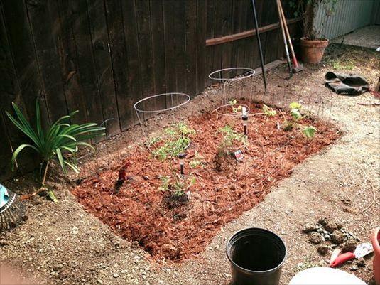 Garden Version 1.0
