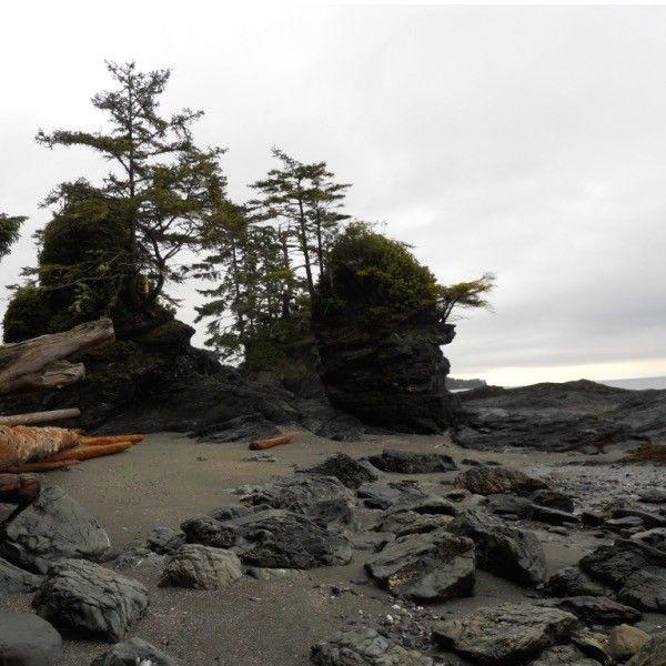 Hiking Tours Usa: Best 25+ West Coast Trail Ideas On Pinterest