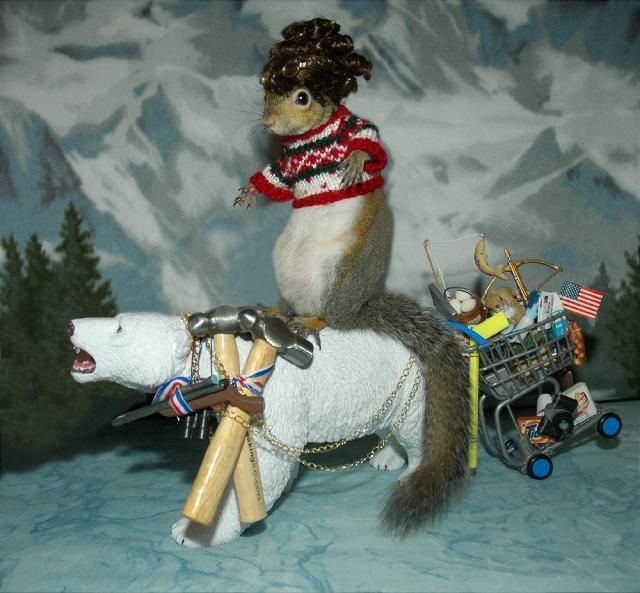 Sugar Bush Squirrel dressed as Sarah Palin..omg