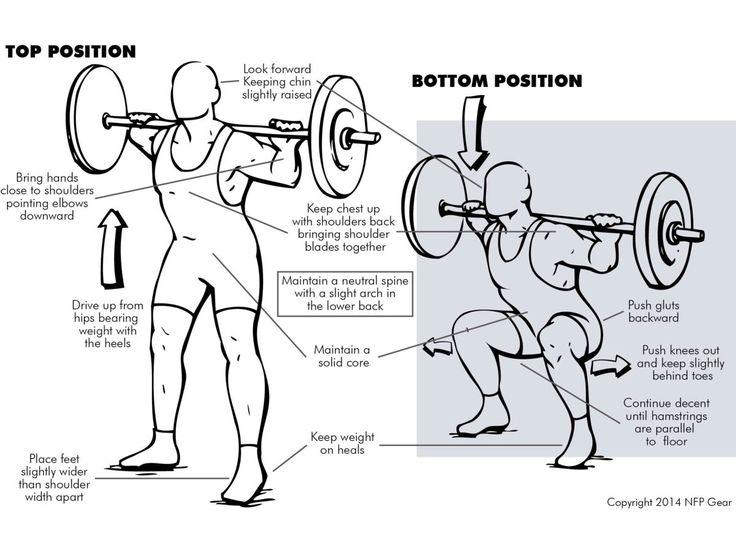 smith machine squat form