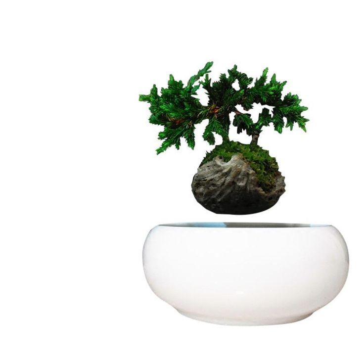 Magnetic Levitation Suspension Planter - Air Bonsai pot
